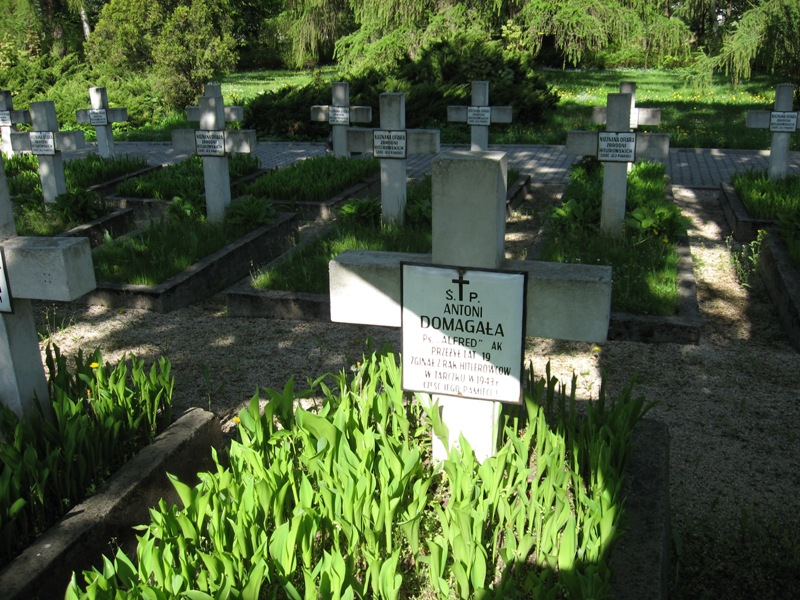 cmentarz kielce (10)