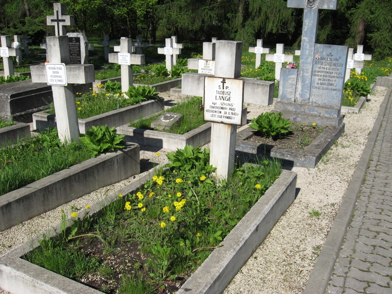 cmentarz kielce (12)