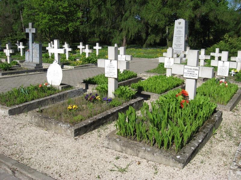 cmentarz kielce (5)